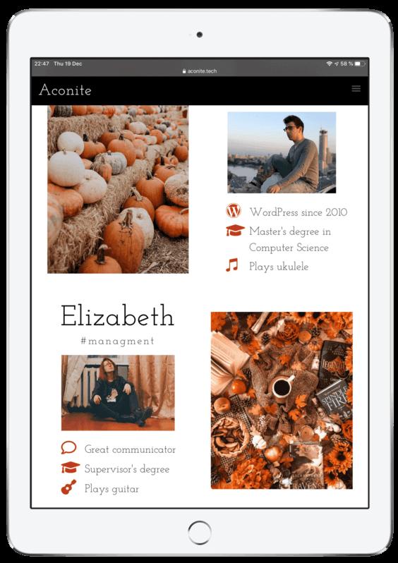 Web Design portfolio responsive tablet